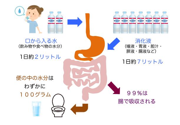下痢は危険のサイン!下痢の原因や治療法を専門医がわかりやすく解説 ...